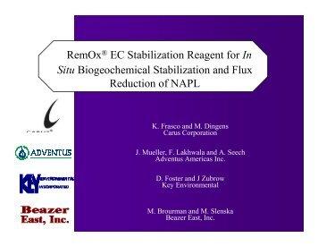 RemOx® EC Stabilization Reagent for In Situ Biogeochemical - IPEC