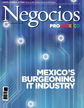 MEXICO'S BURGEONING IT INDUSTRY - ProMéxico