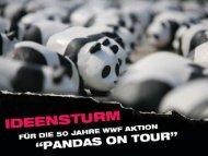 """3. Wie wird """"Pandas on tour"""" - WWF Jugend"""