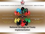National Strategy on Treaty Implementation