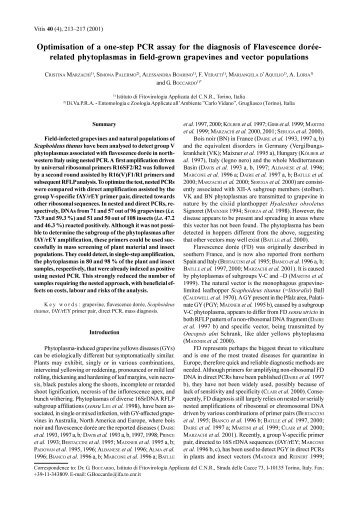 related phytoplasmas in field-grown grapevines and - Vitis-vea