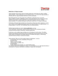 Modification of Oligonucleotides Oligonucleotides carrying other ...