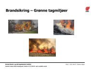Brandsikring af grønne tage - Byg-Erfa