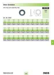 SCHNORR®-Sicherungsscheiben - Reca