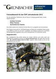 Fotowettbewerb für den ÖVP Jahreskalender 2012 - Wir Grünbacher