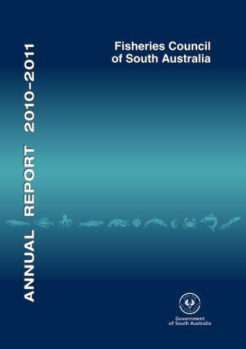 Annual Report 2010/2011 - MISA