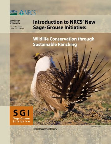 Introduction to NRCS' New Sage-Grouse Initiative: Wildlife ...