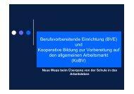 Berufsvorbereitende Einrichtung (BVE) - gemeinsam leben ...