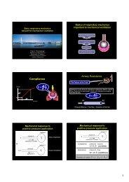 1) Basics on mechanical ventilation.pdf - Vula