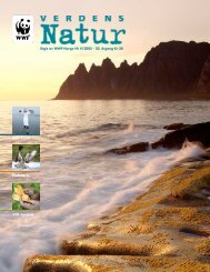 Ren kyst! Vilt apotek Fiskeørn - WWF