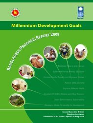 MDG Progress Report 2008 - United Nations in Bangladesh