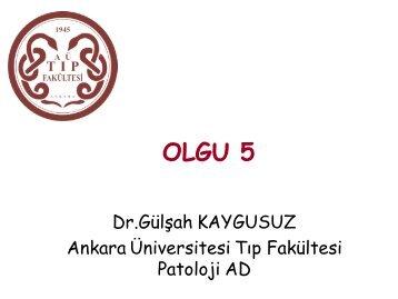 OLGU 5