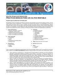 practicas básicas para un cultivo rentable - Cuenta del Milenio ...