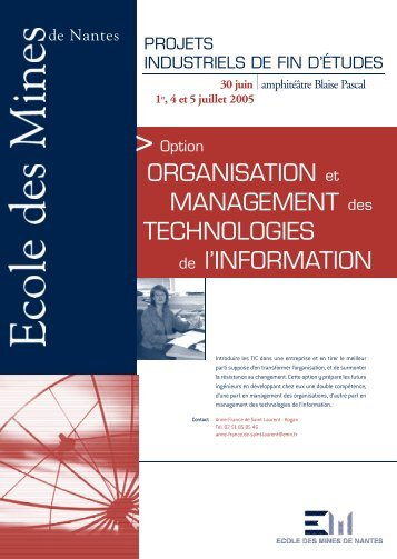 Option organisation et management des technologies de l'information