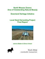 North Wessex Downs Area of Outstanding Natural Beauty Downland ...