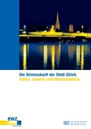 Die Stromzukunft der Stadt Zürich. Sicher, umwelt- und ...