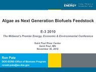 Potential for Algae as a Next Generation Biofuels Feedstock
