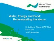 Global Strategy 2009-2013 - The Water, Energy and Food Security ...