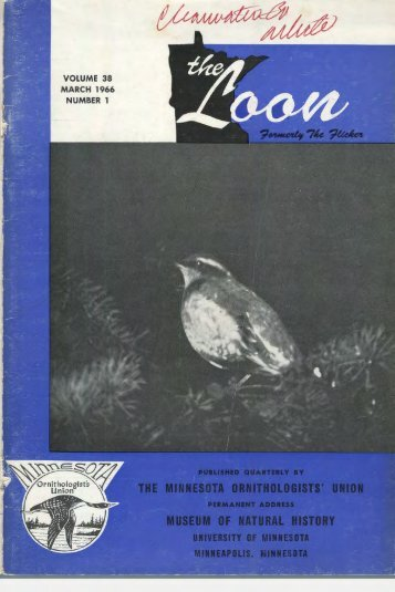 volume 38 march 1966 number 1 - Minnesota Ornithologists' Union