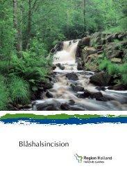 Blåshalsincision - Region Halland