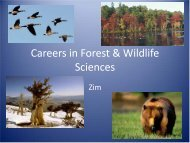 Careers in Forest & Wildlife Sciences - Richard Stockton College of ...