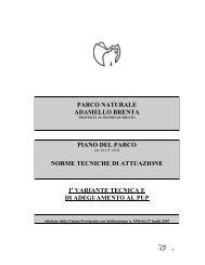 piano del parco - Parco Naturale Adamello Brenta