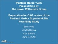 June 2010 CAG Presentation - LWG