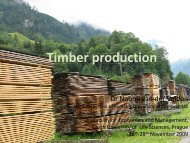 Timber production - Faculty of Economics and Management