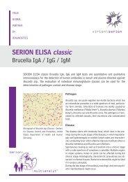 SERION ELISA classic Brucella IgA / IgG / IgM