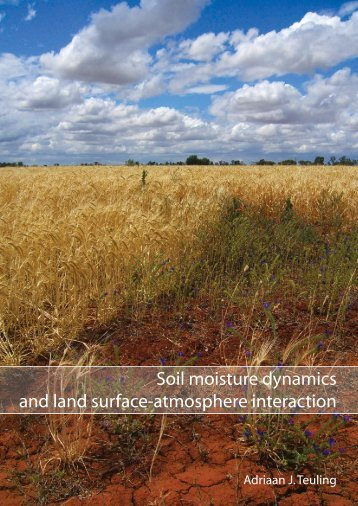 Soil moisture dynamics and land surface-atmosphere ... - Hydrology.nl