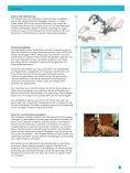 Kolben Anleitung für Lehrkräfte - Seite 6