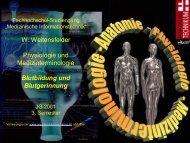 W. Weitensfelder Physiologie und Medizinterminologie Blutbildung ...