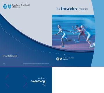 BlueLeaders - Resource Brokerage