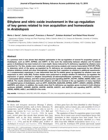 Ethylene and nitric oxide involvement in the up-regulation of key ...