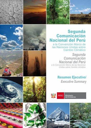 Resumen Ejecutivo - CDAM - Ministerio del Ambiente