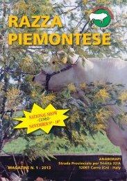razza piemontese 2013 - Anaborapi
