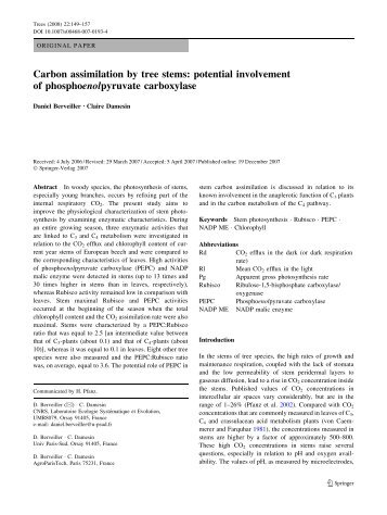 Carbon assimilation by tree stems: potential involvement of ...