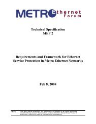 MEF protection requirements and framework