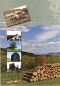 Download als PDF - Mittlere-Bayerischer-Wald.de - Seite 2