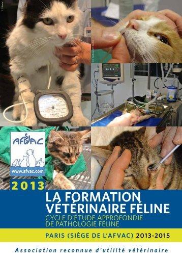 la formation vétérinaire féline - AFVAC