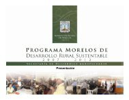 Meta. - Gobierno del Estado de Morelos
