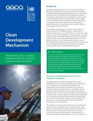 Clean Development Mechanism: Exploring the ... - Gender Climate