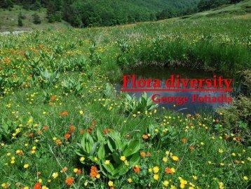 Flora diversity