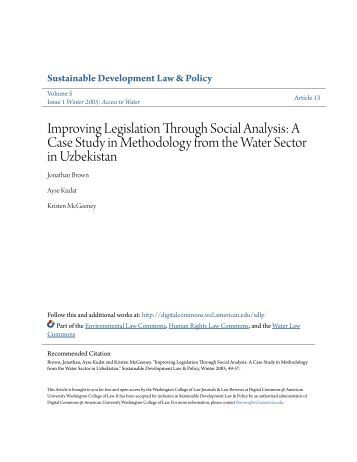 case analysis on from muddling through Lindblom's model of muddling through—a version that fits the chinese con-  we  illustrate our key theoretical concepts and arguments in a case study of gov.