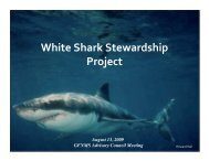 White Shark Stewardship Project - Gulf of the Farallones National ...