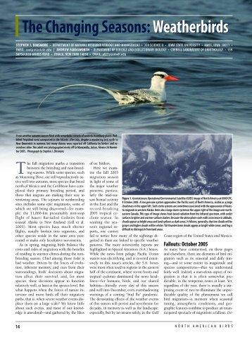 The Changing Seasons: Weather Birds - American Birding Association