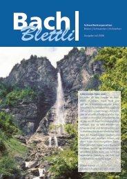 Nr. 1, Juli 2006 - schwellenkorporationen.ch