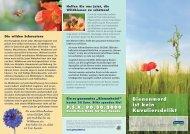 Infofolder Wildbienen - Global 2000