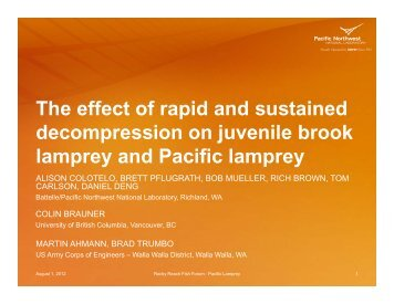 Colotelo RRFF -lamprey barotrauma presenatation August 2012.pptx