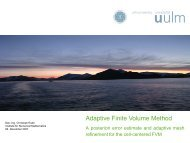 Adaptive Finite Volume Method - Computational Science Center ...